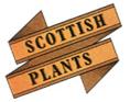 Scottish Plants