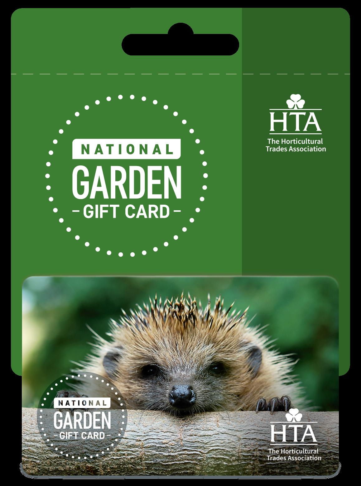 Hedgehog design